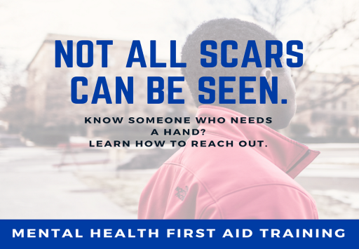Mental Health First Aid Picture